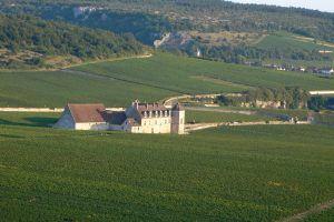 Vol en montgolfière au-dessus des Climats du Vignoble de Bourgogne et du Clos de Vougeot