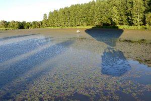 Vol en montgolfière au-dessus d'un étang en Bourgogne