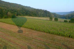 Ombre de la montgolfière sur les plantes fourragères à Marsannay-la-Côte