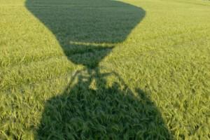 En montgolfière au ras des blés